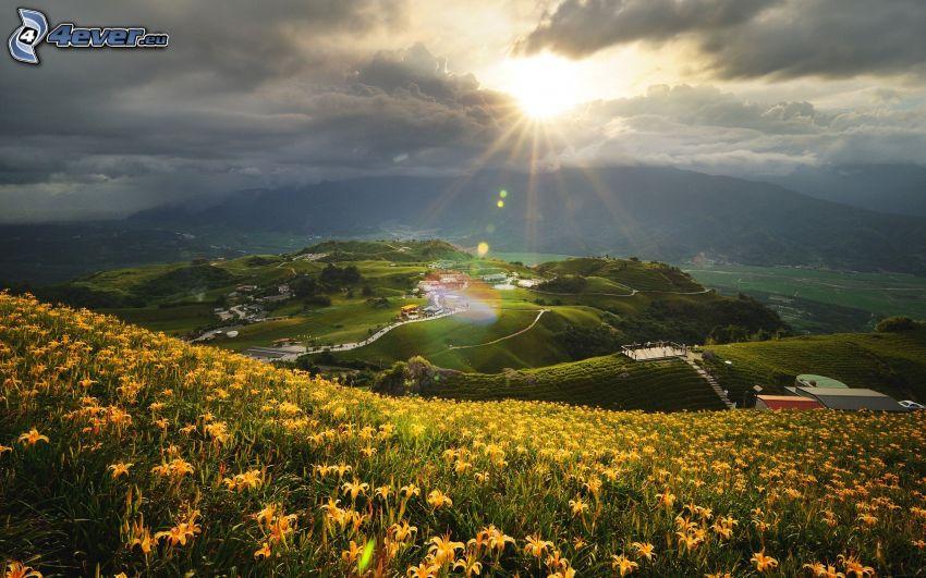 utsikt över landskap, by i dalen, äng, gula blommor, solstrålar bakom moln, kullar
