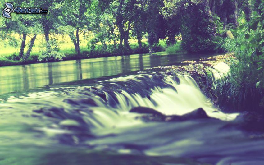 vattenfall, flod, träd