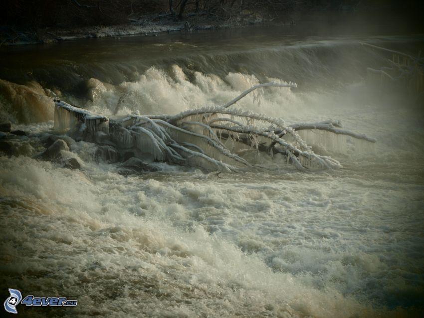 vattenfall, gren, flod, fryst träd