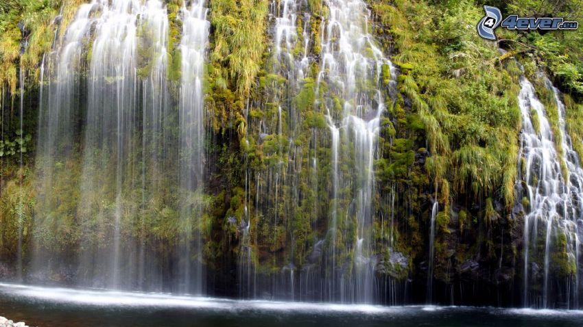 vattenfall, grönska