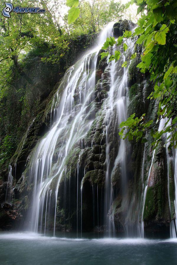 vattenfall, klippa, grenar