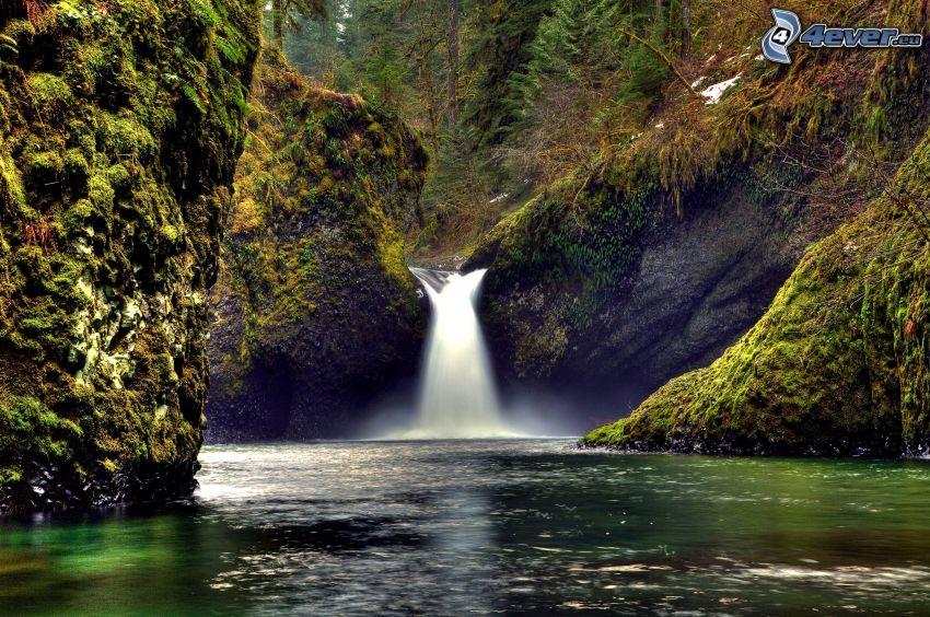 vattenfall, sjö, grönska