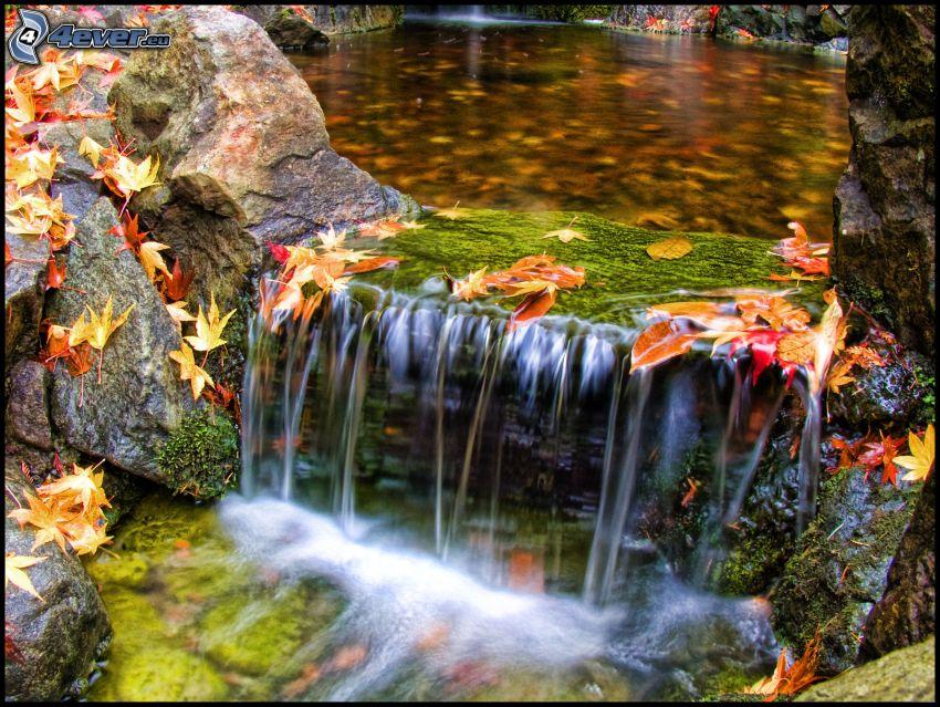vattenfall, stenar, flod