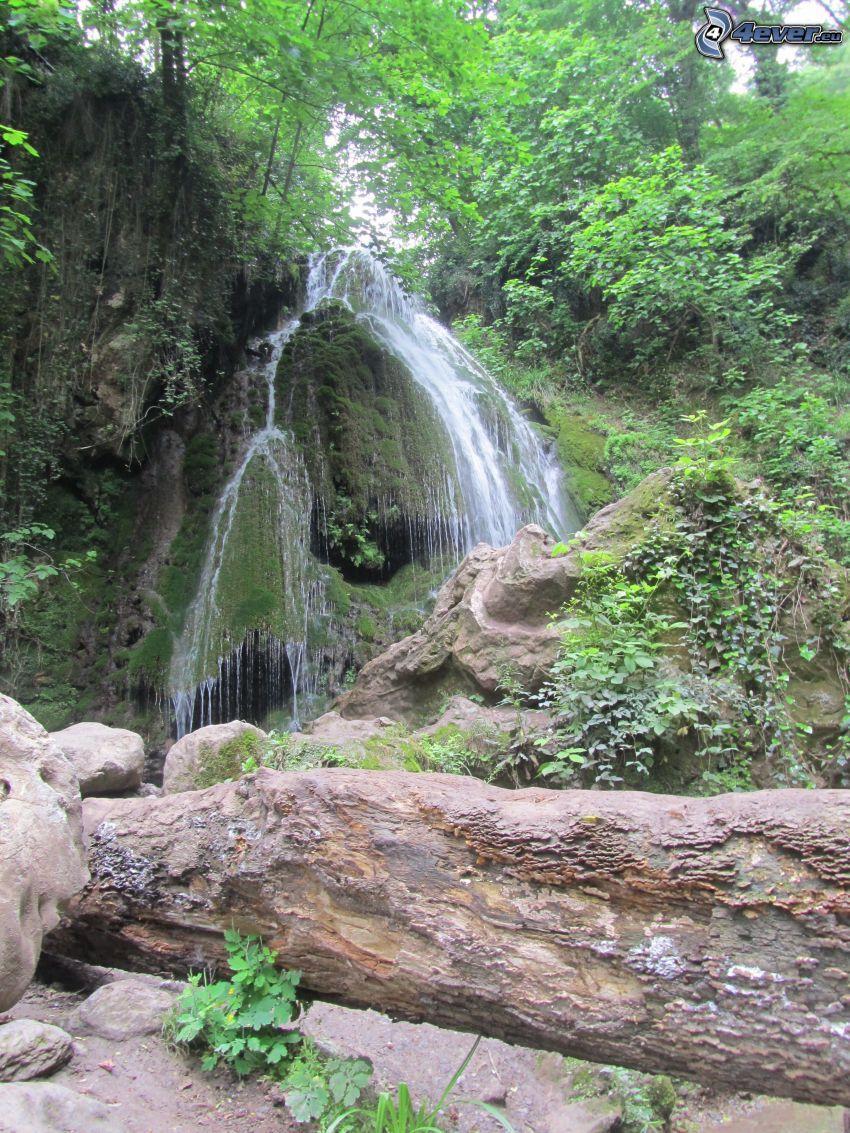 vattenfall i skogen, klippor, grönska