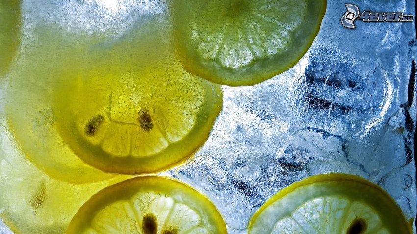 citronskivor, vatten