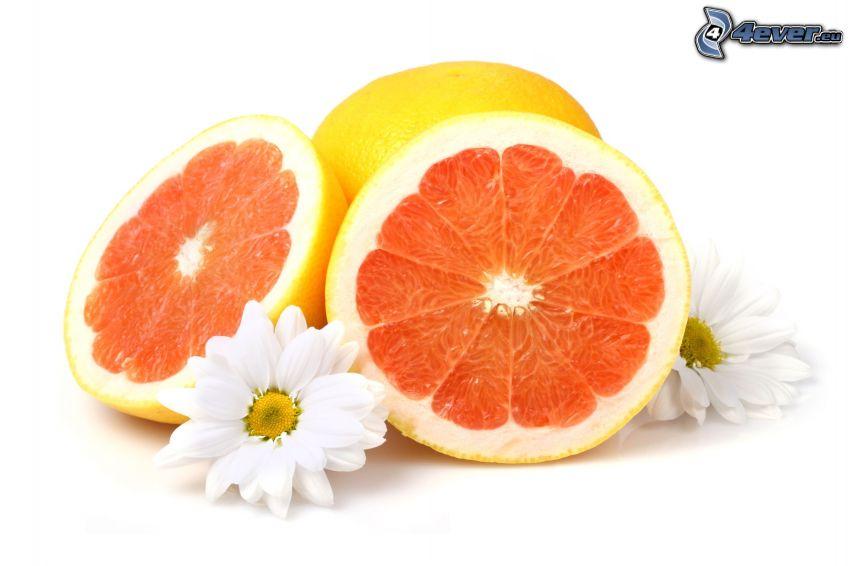 grapefrukt, vita blommor