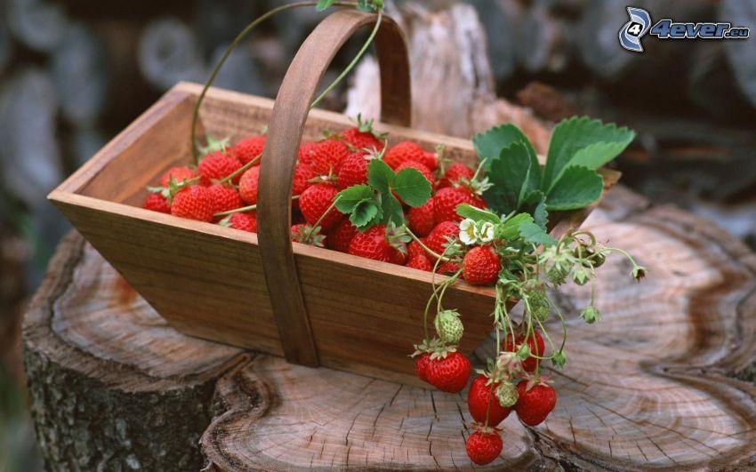 jordgubbar i korg