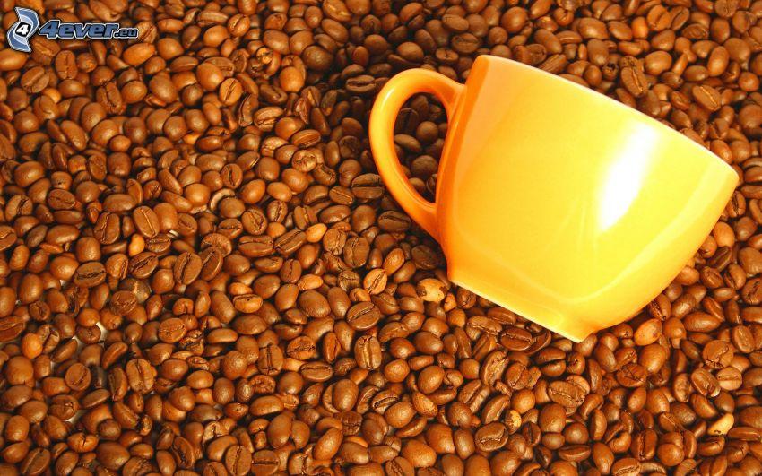 kaffebönor, kopp