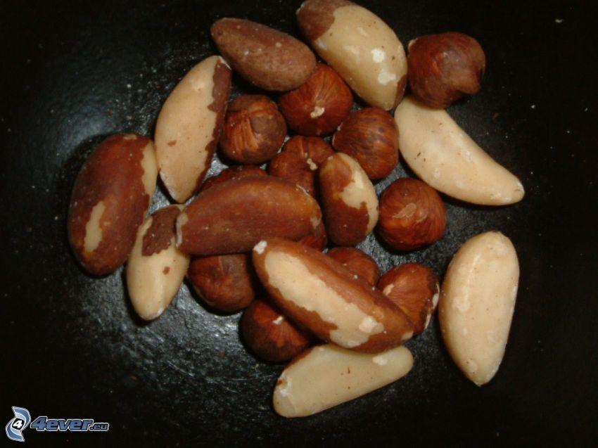paranötter, hasselnötter
