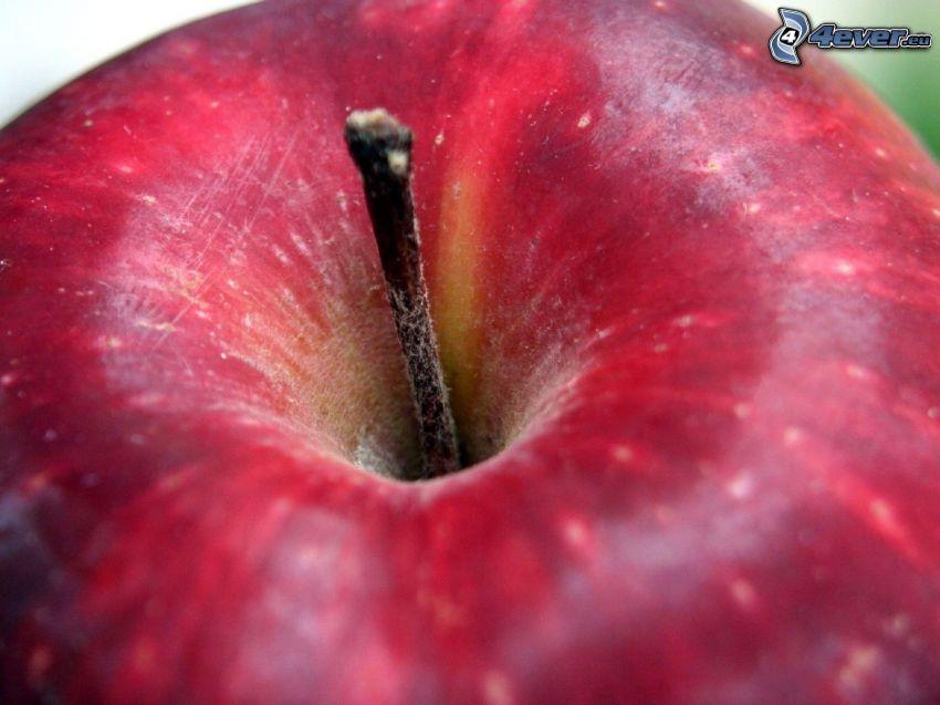 rött äpple, makro