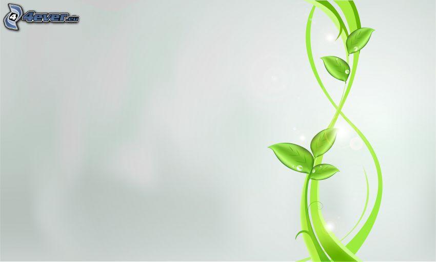 gröna blad, vit bakgrund, digital konst