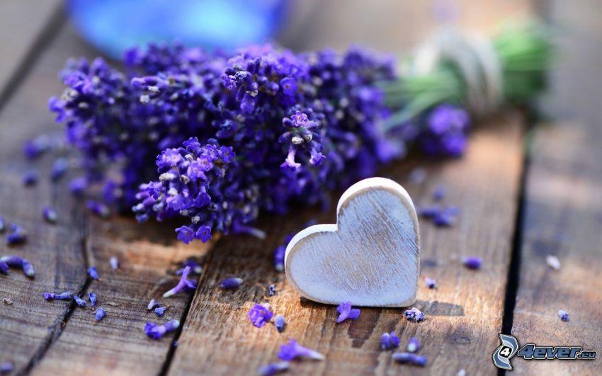 lavendel, hjärta