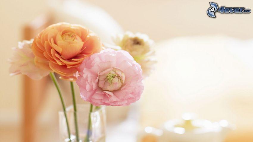 pion, blommor i vas