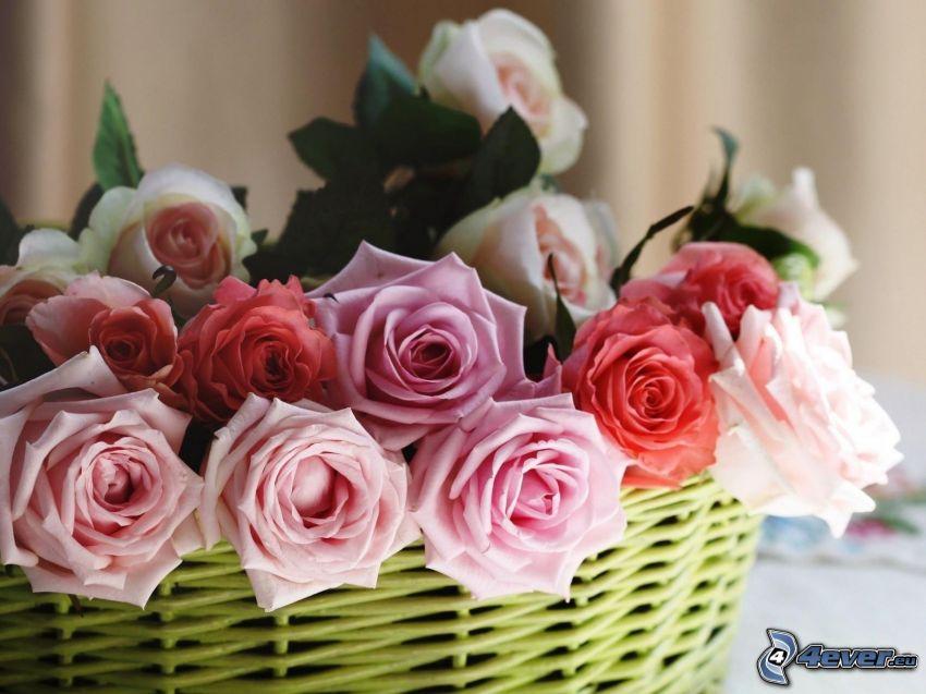 rosor, korg