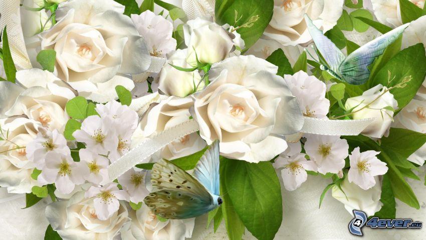 vita rosor, fjärilar