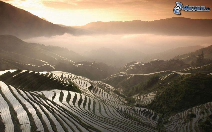 vietnamesiska risfält, kaskader, soluppgång