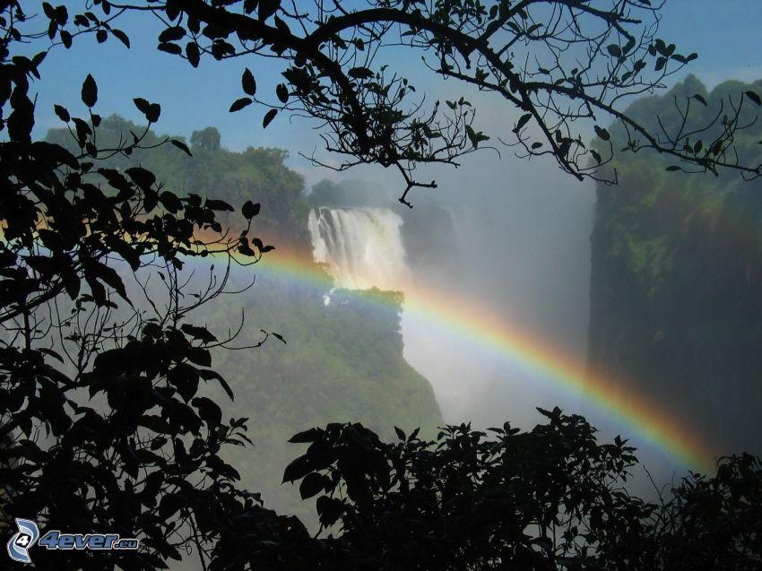 Viktoriafallen, regnbåge, löv