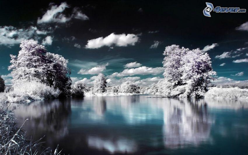 vinterlandskap, snöklädda träd, flod