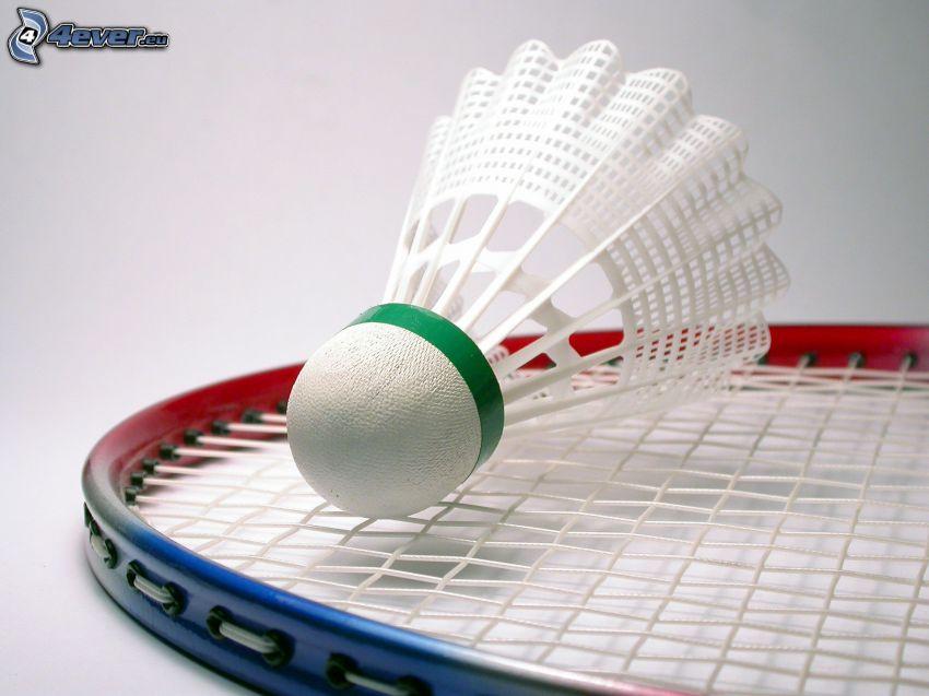 badmintonboll, badmintonracket