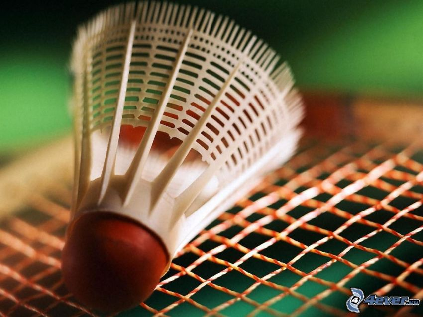 badmintonboll, raket