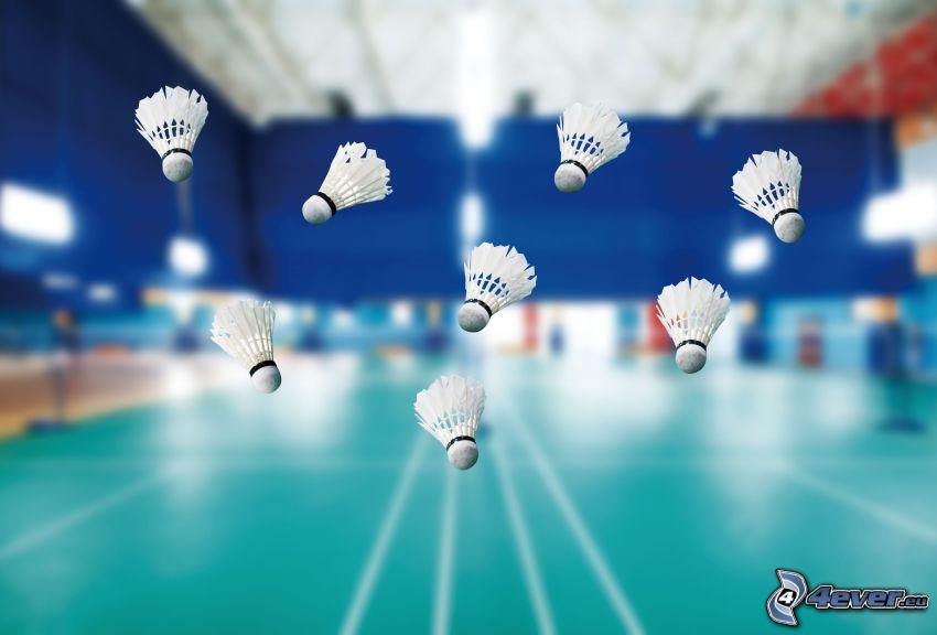 badmintonbollar, gym