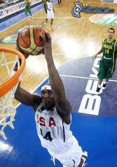 Lamar Odom, NBA
