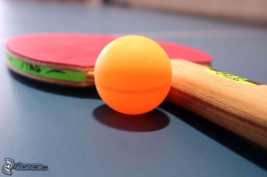 bordtennis, raket, boll