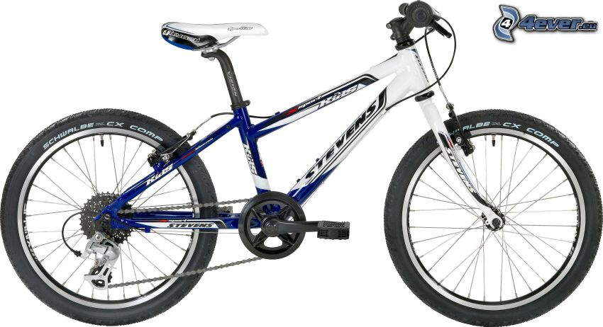 cykel, sport