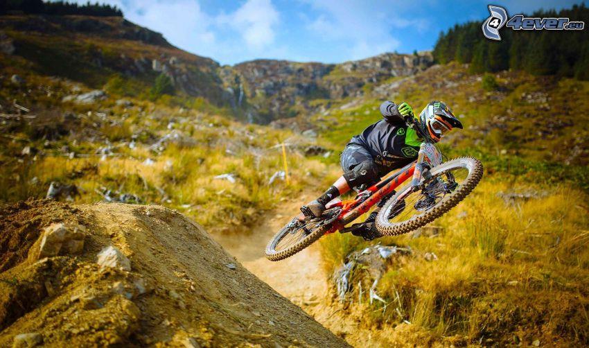 mountainbiking, hopp, grönska