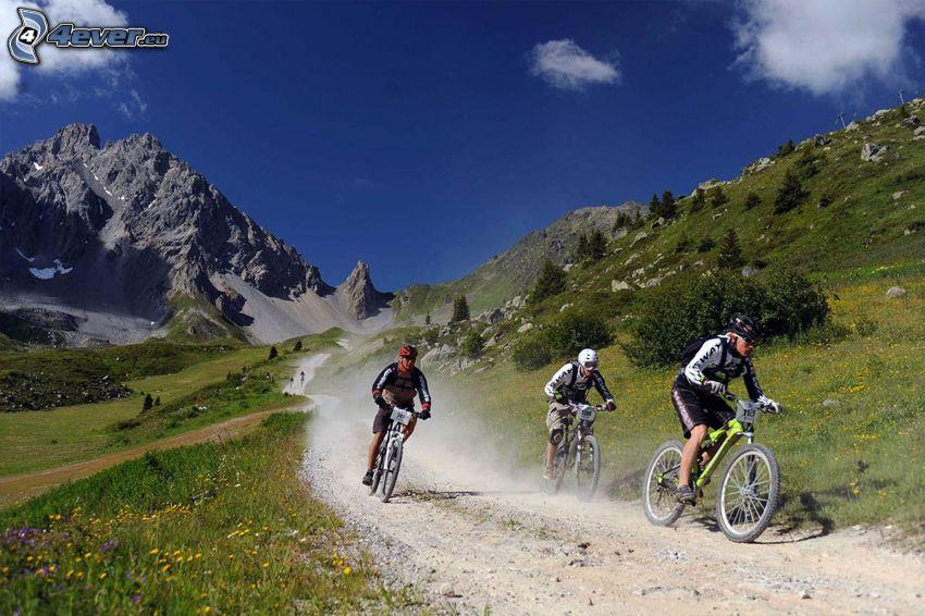 mountainbiking, klippigt berg, fältstig