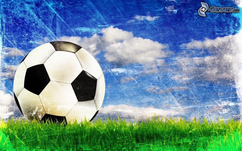 fotboll, gräs, himmel