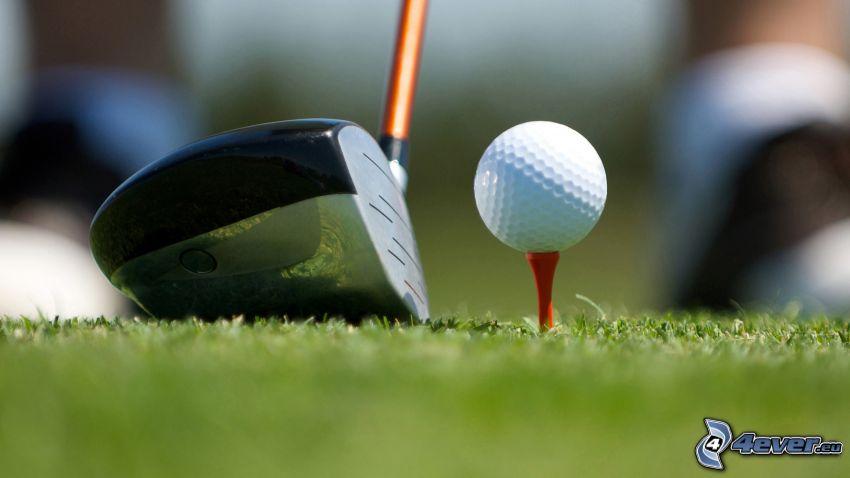 golf, golfboll, golfklubba