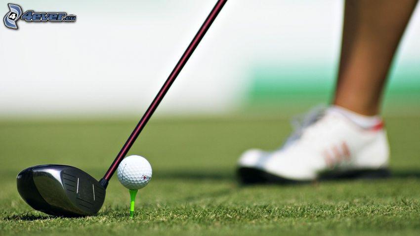 golf, golfboll, gräs