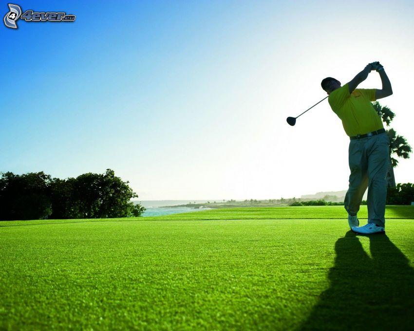 golf, golfspelare, gräsmatta