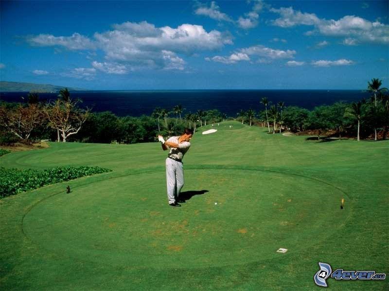 golf, sport, natur