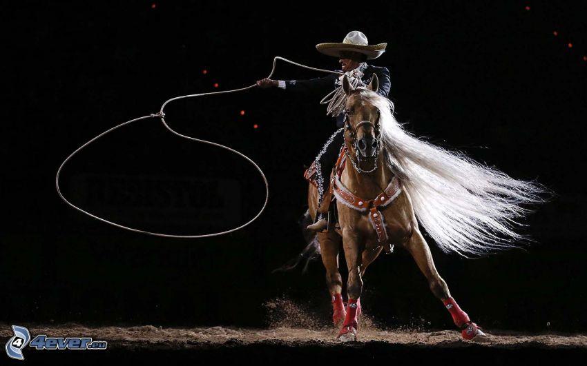 hästridning, cowboy