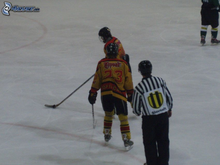 ishockey, is, domare