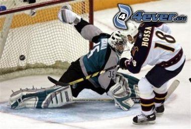 ishockey, Marián Hossa, mål