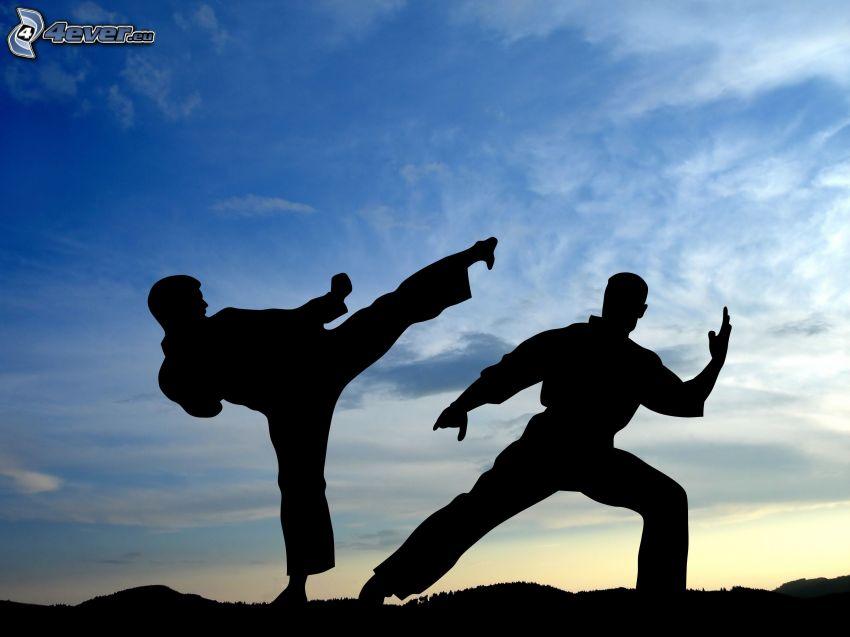 judo, silhuetter av människor