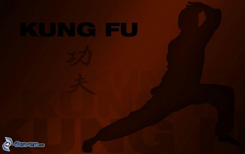kung fu, silhuett