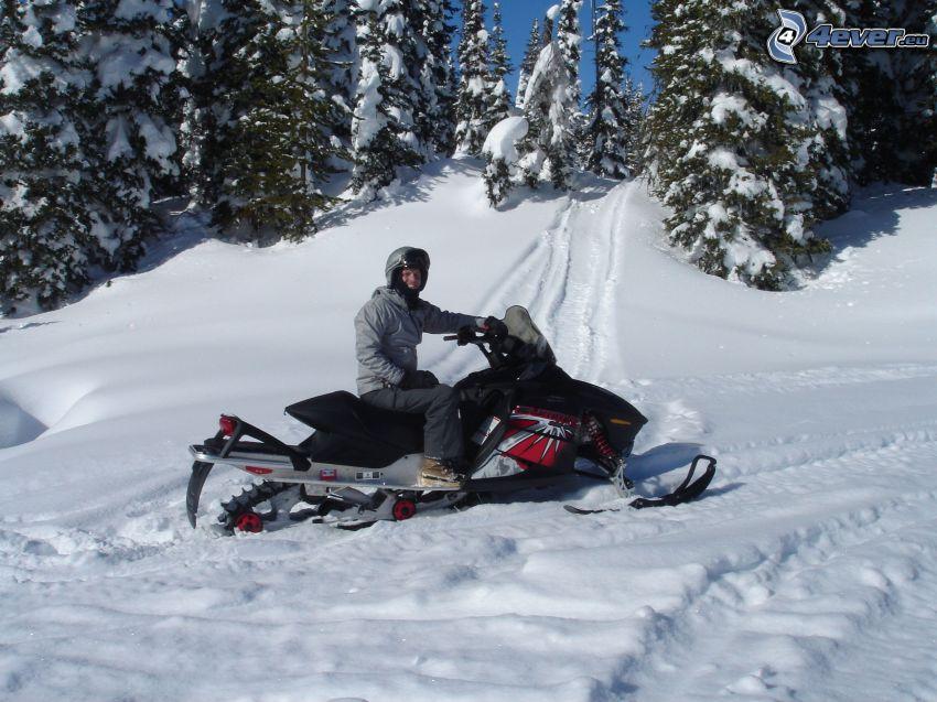 snöskoter, snöigt landskap