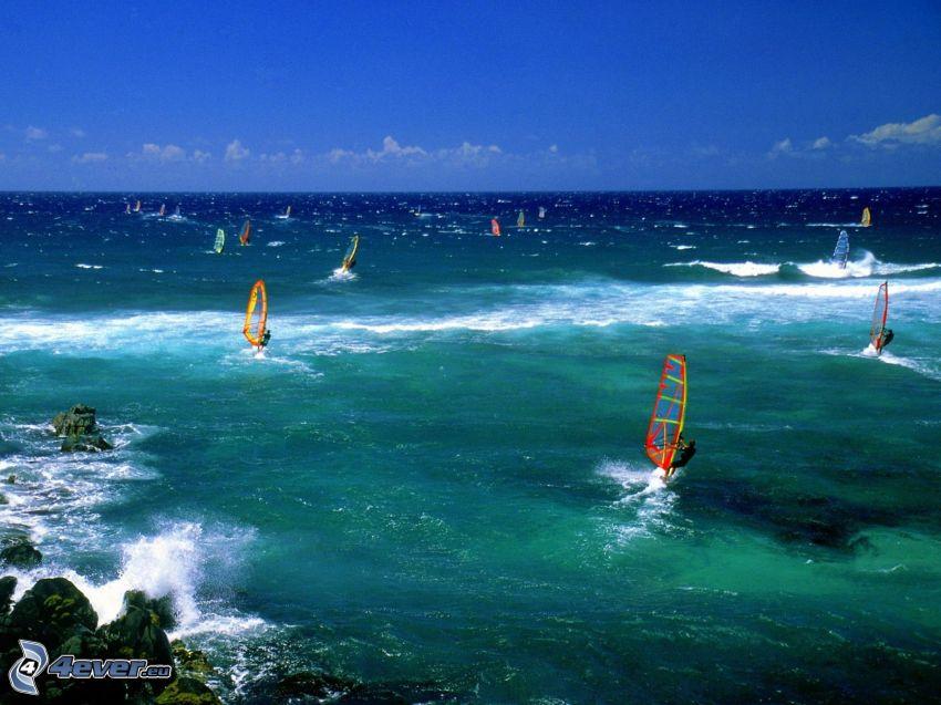 surfing, hav