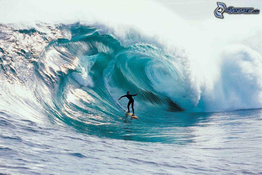 surfing, vågor