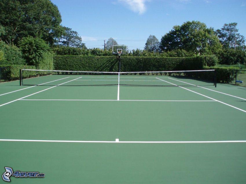 tennisplan, buskar, träd