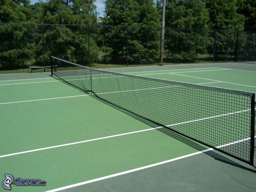 tennisplan, träd