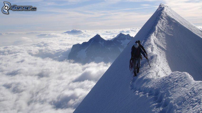 turister, snöklädda berg, inversion, utsikt