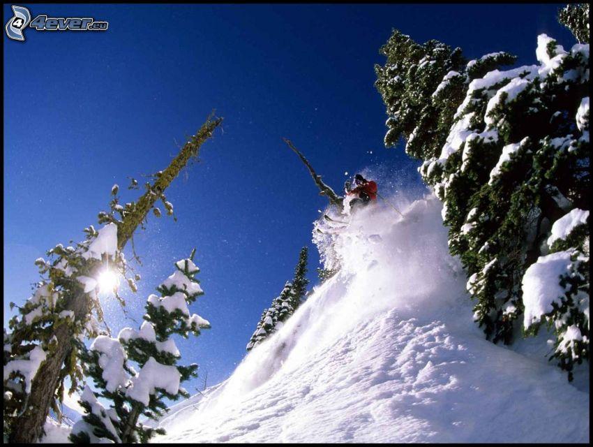 extrem skidåkning, snö, snöig skog