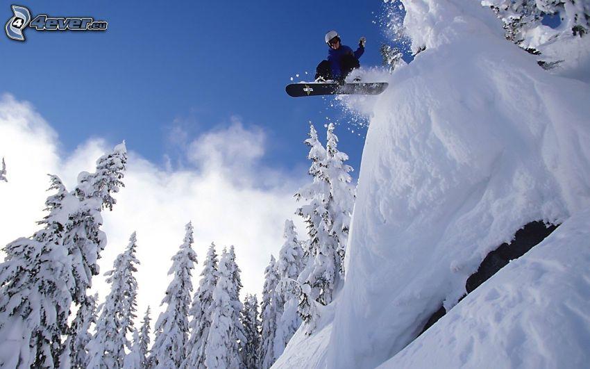 extrem snowboardåkning, adrenalin, snöig skog