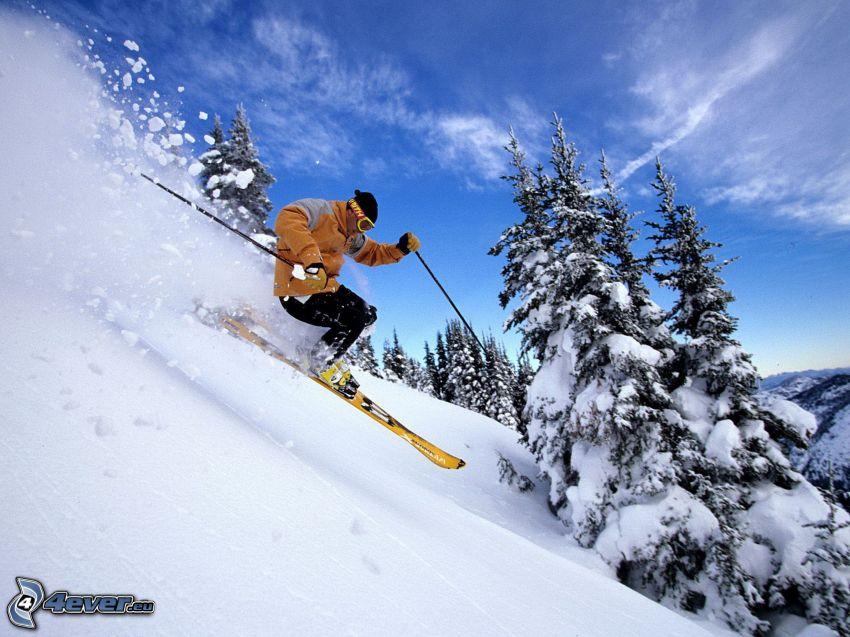 skialpinist, skidåkare