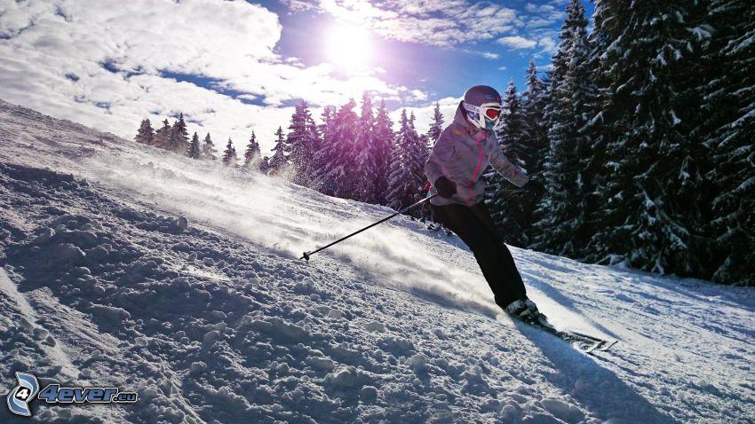 skidåkning, skidåkare, snöig skog, backe
